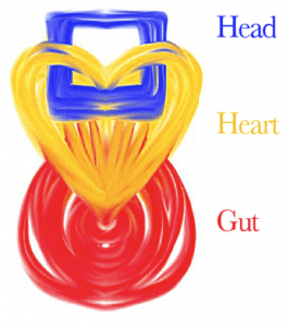 head-heart-gut-265x300